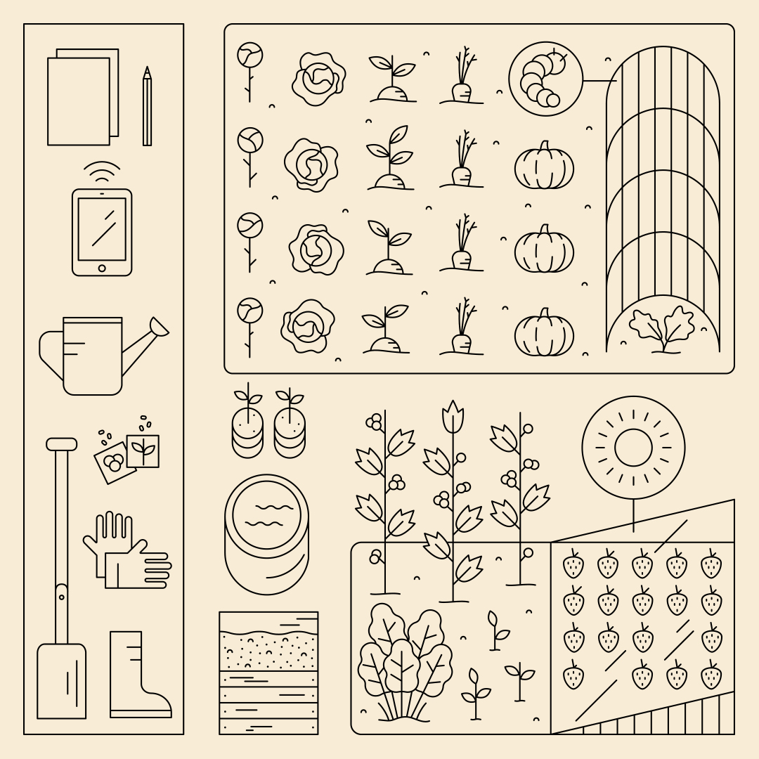 A line drawing of the different gardening equipment and types of plants you can use to create an allotment.