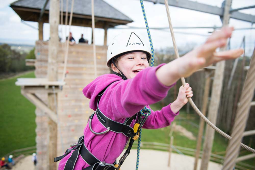 Cub on the high ropes